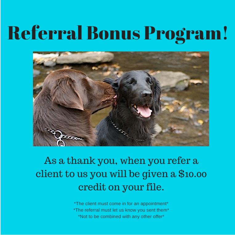 refferal-bonus.png