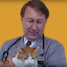 dr-logue.jpg