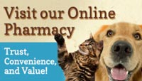 Dale Mabry Animal Hospital Online Pharmacy