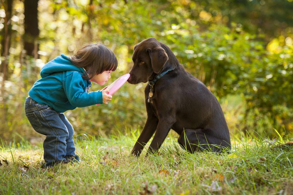 little boy with dog after behavior training with radford veterinarian
