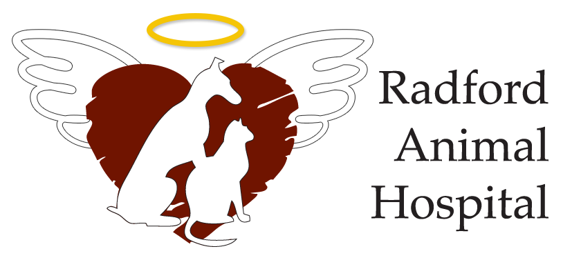 RAH angel fund