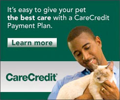 photo_carecredit.jpg