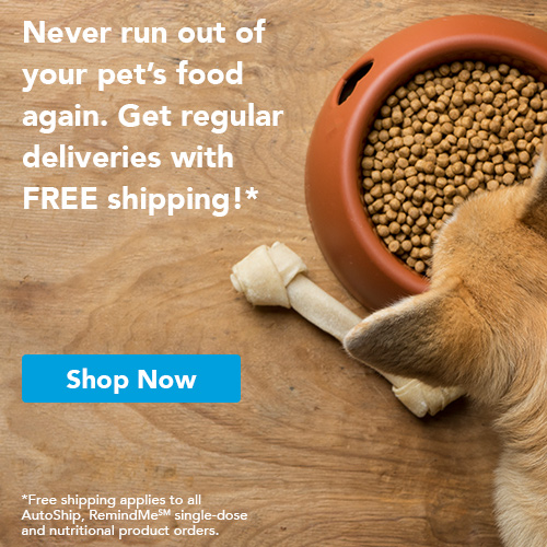 Never run out of your pet's food again. Get regular deliveries with FREE shipping! Applies to all AutoShip, RemindMe single-dose and nutritional product orders. Shop Now.