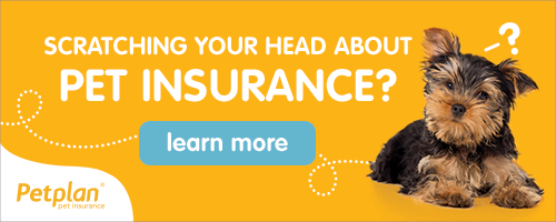 Scratching your head about pet insurance? Learn More about Petplan.