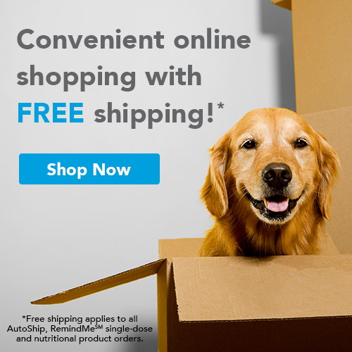 Convenient online shopping with FREE shipping! Applies to all AutoShip, RemindMe single-dose and nutritional product orders. Shop Now.