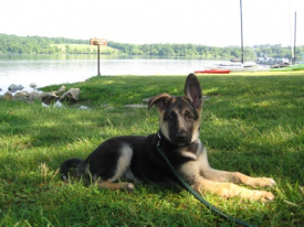 Max_at_Lake_June_7_2009_0601_1.jpg
