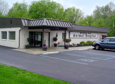 Veterinarian Indianapolis