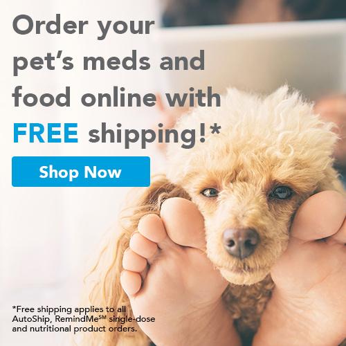 vetsource online pharmacy link